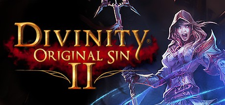 Divinity: Original Sin 2 Steam CD Key Global