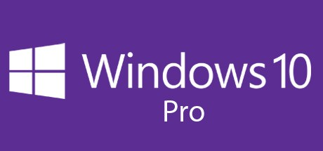 Microsoft Windows 10 Professional Cover