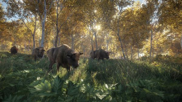 theHunter: Call of the Wild Screenshot