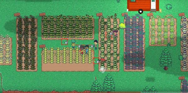 Cash Crop Screenshot